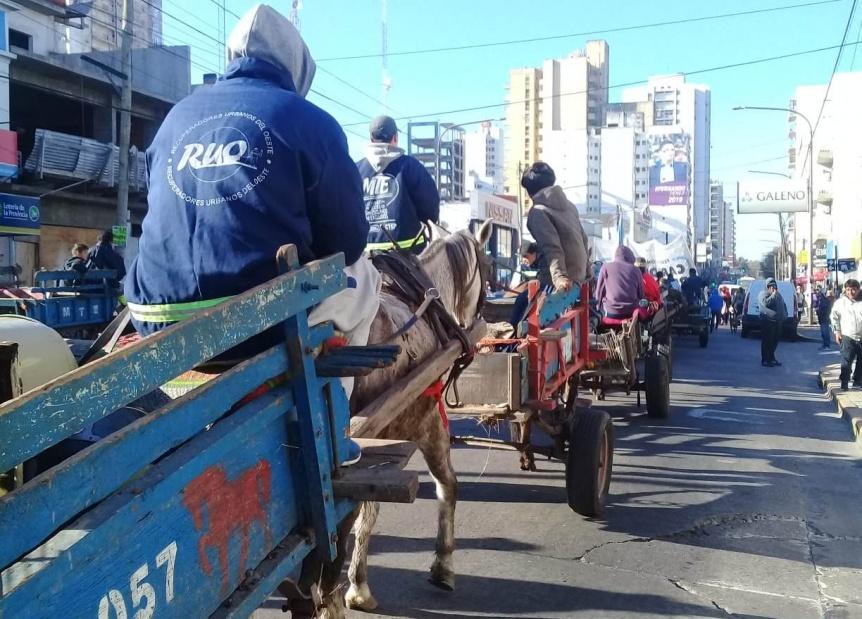 Carreros reclamaron la restituci�n de caballos incautados en Tribunales