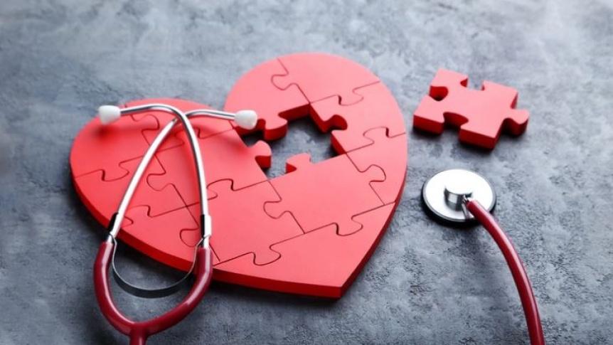 Las enfermedades del coraz�n son la primera causa de muerte en el mundo