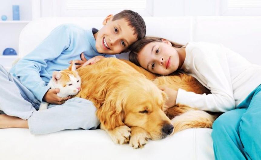 Mascotas: Los beneficios del v�nculo con los chicos