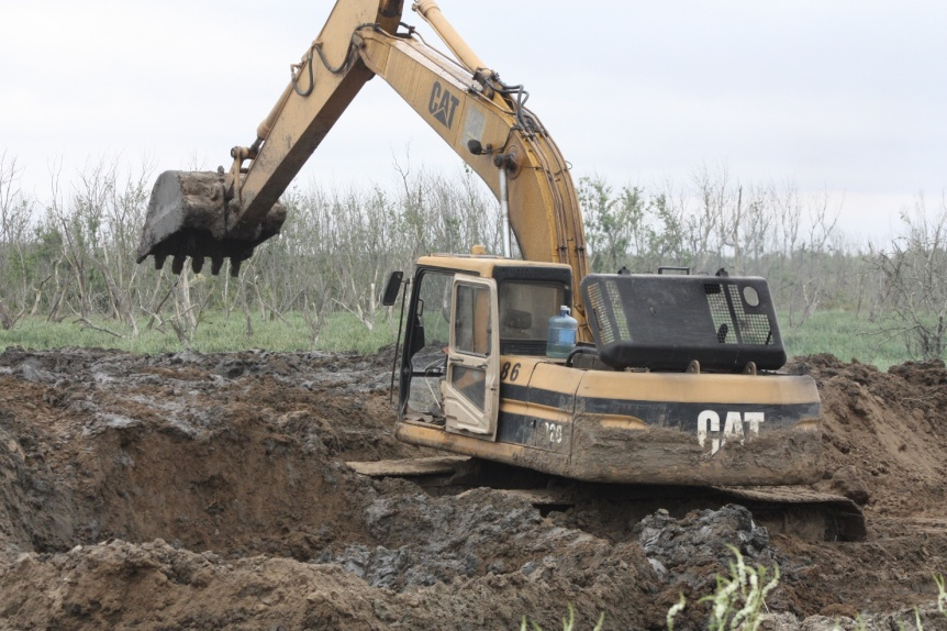 Denuncian nuevo avasallamiento a bosques y humedales de Hudson
