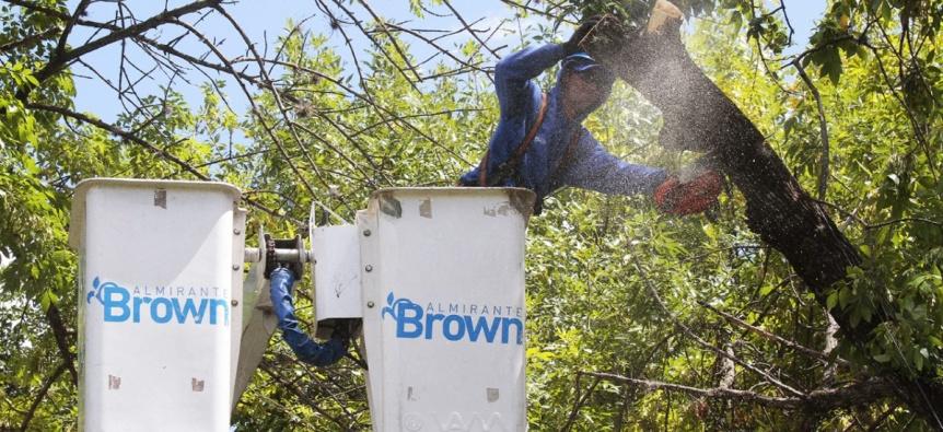 El municipio de Almirante Brown suspendió la poda para prevenir mejor el Covid-19