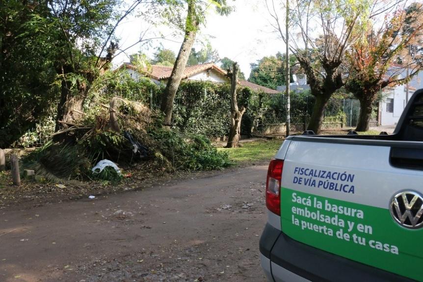 En Berazategui est� prohibido podar en la v�a p�blica