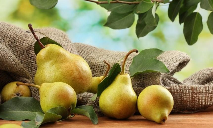 Las peras no son solo sabrosas, son tambi�n saludables