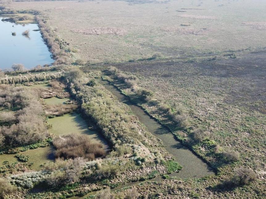 Se extinguió el incendio en los bañados de la ribera de Quilmes